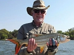 One of the tigerfish caught on a Clive killer Clouser self tie. Chobe rapids, Oct 2013